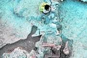 Археологи нашли окаменевшие останки древних ящеров. // Buenolatina.ru