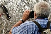 Туристам нравится наблюдать за птицами. // destination360.com
