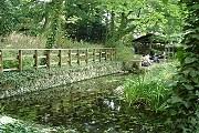 Сад Соваж-Сен-Венсан был заброшен в течение 20 лет. // flowersway.com