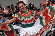 Фестиваль знакомит с культурой стран Карибского региона. // buenolatina.ru