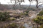Туристы смогут побывать в диких джунглях. // malawitourism.com