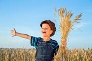Чехия предлагает необычный сельский отдых.  // Sergiy Bykhunenko, Shutterstock.com