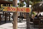 Аруба предлагает пляжи и фестивали.  // natas, Shutterstock.com