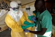 Лихорадка Эбола - смертельно опасное заболевание. // AFP