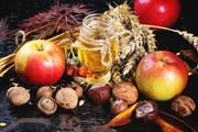 Август - время сбора урожая.  // Natasha Breen, Shutterstock.com