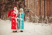 Дед Мороз побывает в трех десятках городов.  // EduardSV, Shutterstock.com