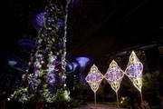 """""""Сады у залива"""" станут сказочной страной на время Рождества. // yoursingapore.com"""