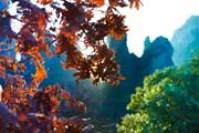 Греция гордится своей природой.  // Sergey Novikov, Shutterstock.com