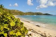 Поезд привезет на пляжи.  // Lauren Orr, Shutterstock.com