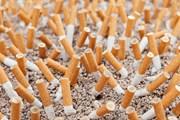 Некурящие туристы заплатят за лежак и зонт на 20% меньше. // Myper, shutterstock.com