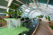 Садик в аэропорту Incheon // Alamy