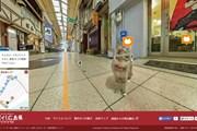 Виртуальная карта пригорода Хиросимы позволяет туристу почувствовать себя котом. // japantimes.co.jp