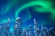 Северное сияние в Финляндии // Antti Pietikainen, theguardian.com