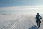 Велопробег в Антарктике - недешевое удовольствие. // nytimes.com