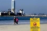 Купаться на пляжах Лонг-Бич пока нельзя.  // Los Angeles Times