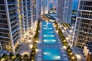 Бассейн комплекса Icon Brickell // starwoodhotels.com