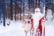 Попасть к Деду Морозу стало проще. // votchina-dm.ru
