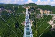 Одновременно на мосту могут находиться 800 человек.