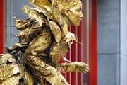 Живые статуи со всего мира соберутся в Арнеме.