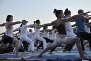 Тысячи любителей йоги соберутся в пустыне Арава.