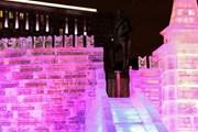 """В парке """"Сокольники"""" можно будет построить ледяной замок. // mos.ru"""