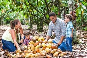Музей посвящен производству шоколада в Доминикане. // cacaotour.com