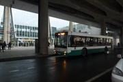 Автобус у аэропорта Пулково // Юрий Плохотниченко