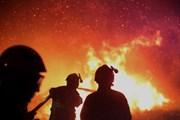 На юго-востоке Франции горят леса. // Raphael Poletti , AP