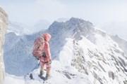 Альпинисты смогут подняться на Эверест только в сопровождении гида. // steampowered.com