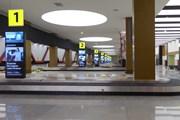 В Шереметьево не справились с доставкой багажа в новый терминал // Юрий Плохотниченко