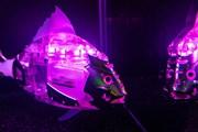 Пять рыб-роботов можно увидеть на ВДНХ. // mos.ru